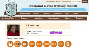 NANOWRIMO Completed