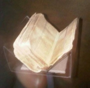 nmaach-pics-4-nat-turner-bible